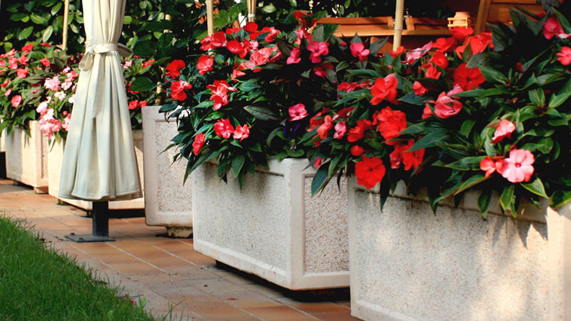 Fioriere Da Esterno In Cemento vasi in cemento e fioriere in cemento- giardinaggio- rota