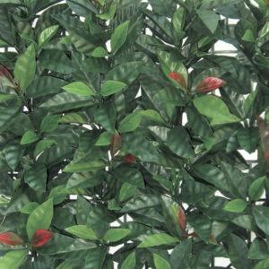 siepe artificiale sempreverde redplast, siepe finta, siepe, siepi artificiali, Giardinaggio Bergamo, Rota Commerciale Bergamo